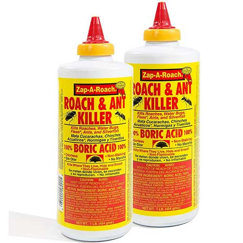 Boric Acid Spider Killer