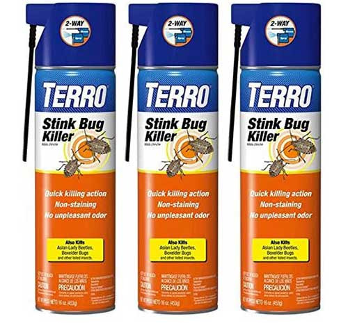 Terro Stink Bug Killer Aerosol Spray