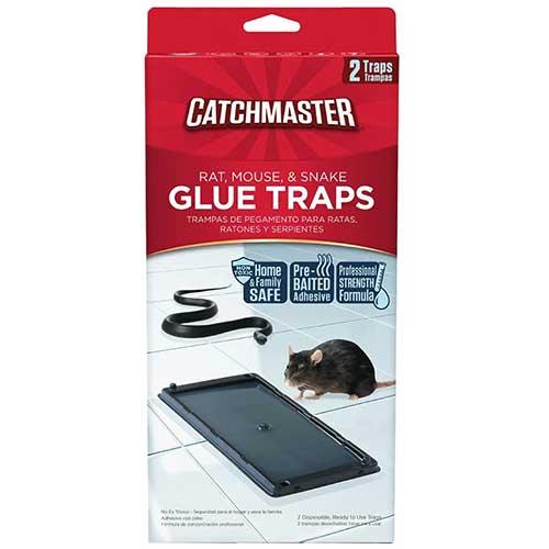 catchmaster baited rat glue trap