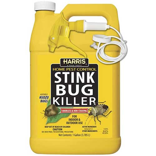harris stink bug killer spray