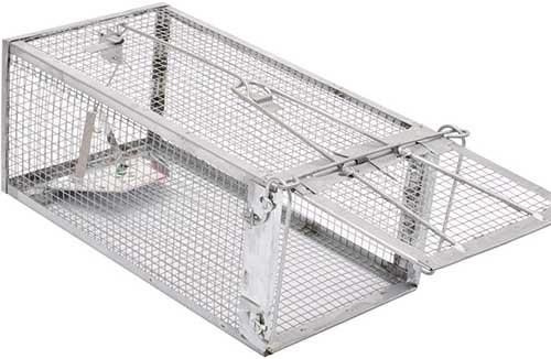 kensizer live rat trap cage