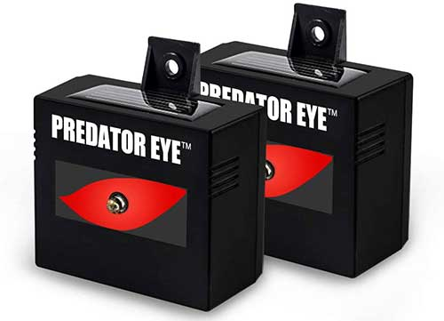 Predator Eye Nighttime Solar Powered Skunk and Animal Repeller