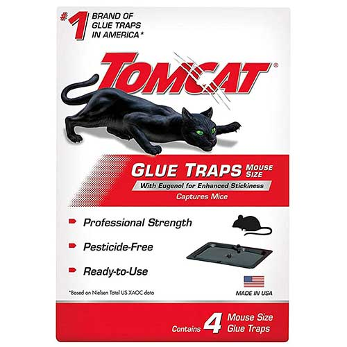 tomcat mouse glue trap to get rid of mice