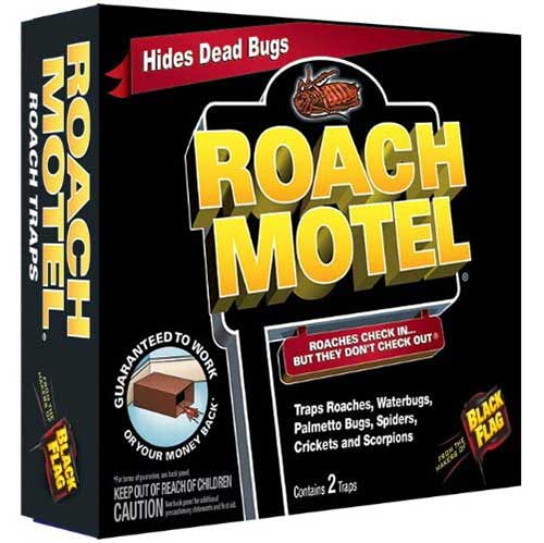 roach motel to determine if cockroaches are around