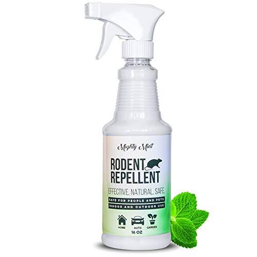 Mighty Mint Spray