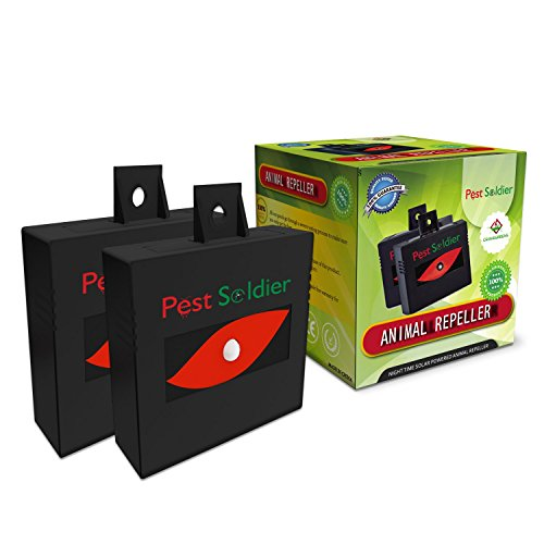 Nighttime Solar Powered Animal Repeller By Pest Soldier