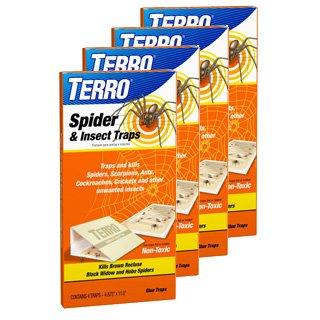 Terro 3200 spider trap