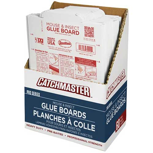 Catchmaster 60M Rat Glue Board