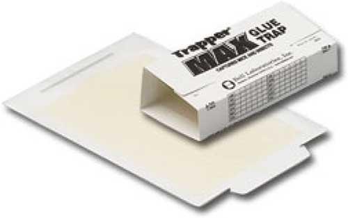 trapper max glue trap for rats