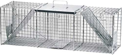 havahart 1045 live animal two door trap for raccoons