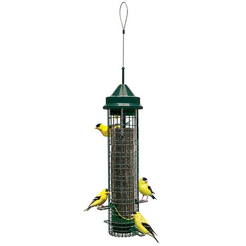 Squirrel-Buster-Finch-Squirrel-Proof-Metal-Bird-Feeder