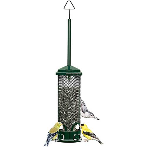 Squirrel-Buster-Mini-Squirrel-Proof-Bird-Feeder