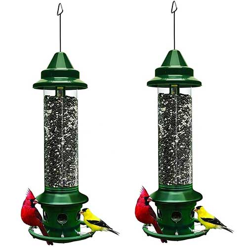 Squirrel-Buster-Plus-bird-feeder