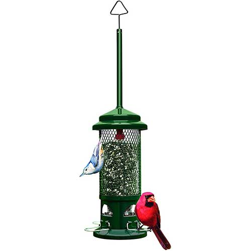 Squirrel-Buster-Standard-Bird-Feeder
