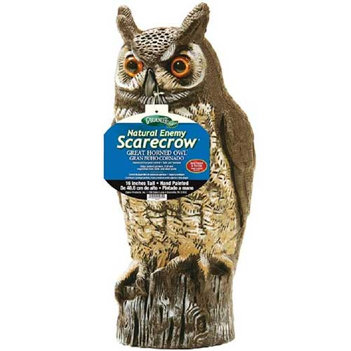 natural-enemy-scarecrow-owl-bird-deterrent