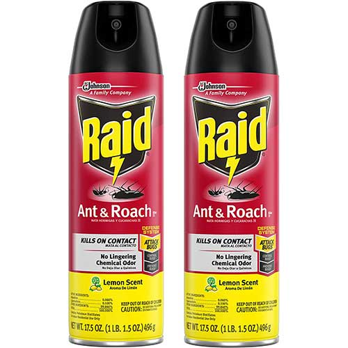 raid ant killer spray