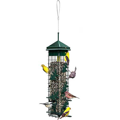 squirrel-solutions-squirrel-proof-bird-feeder