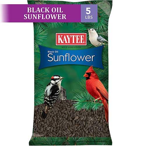 sunflower seeds for chipmunks