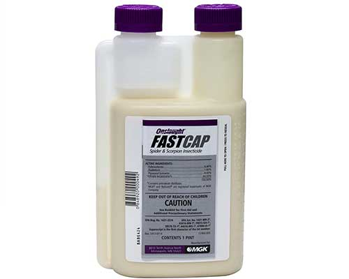 onslaught fastcap spider insecticide