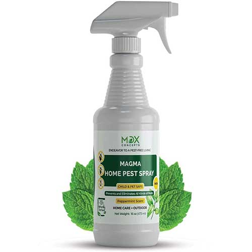 peppermint oil pest control spray pet safe